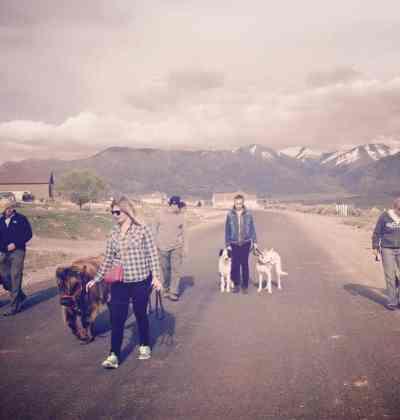 K9 Lifeline dog trainers