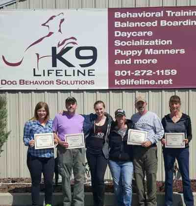 K9 3D Workshop Training