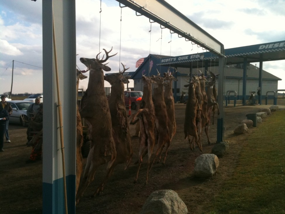 Opening Day of Michigan Deer Season