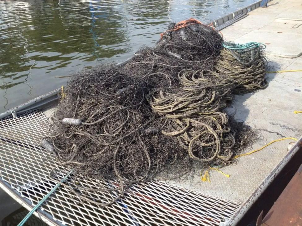 Bayport-Fish-Company-Argo-Nets