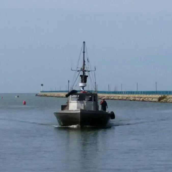 Bay-Port-Fish-Company-Osprey-Caseville