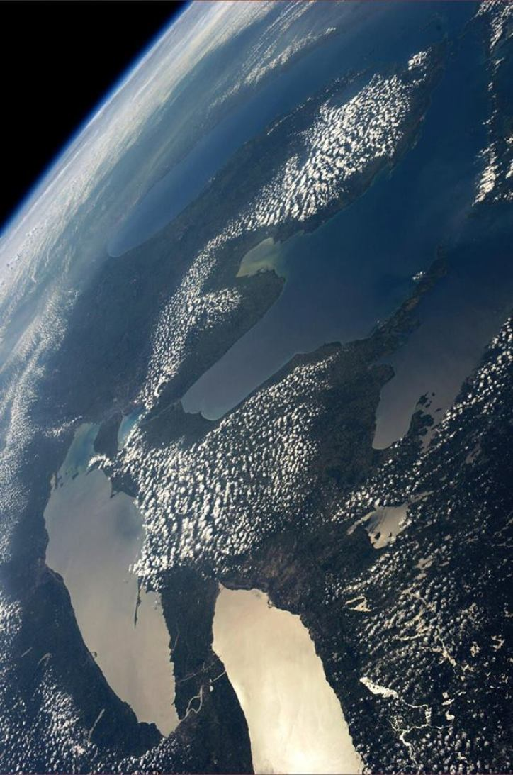 Michigan Thumb From Space