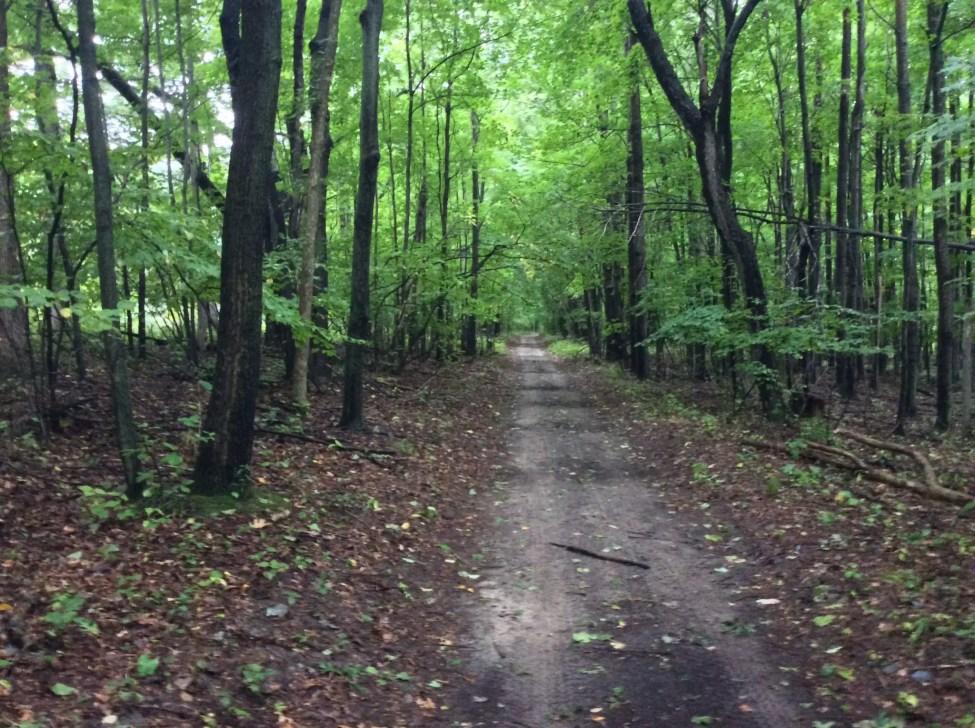 Michigan Indian Trail Sand Road - Native American Trails