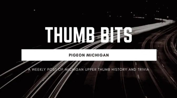 Pigeon Michigan