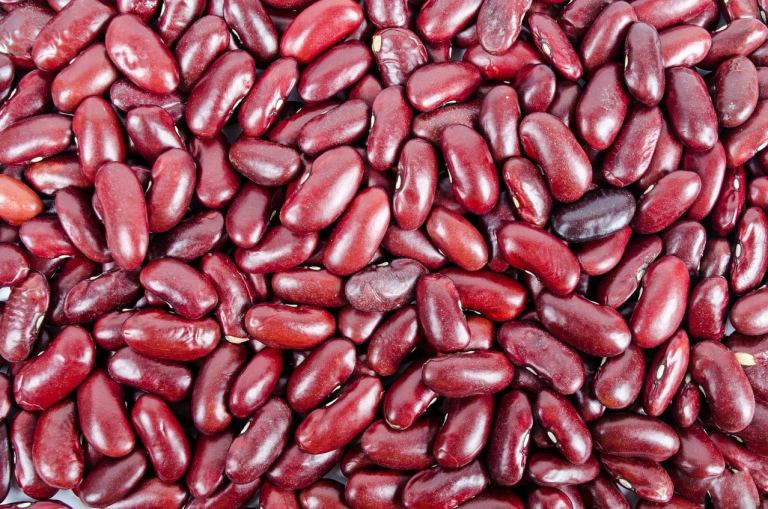 Michigan Kidney Beans - Michigan Food