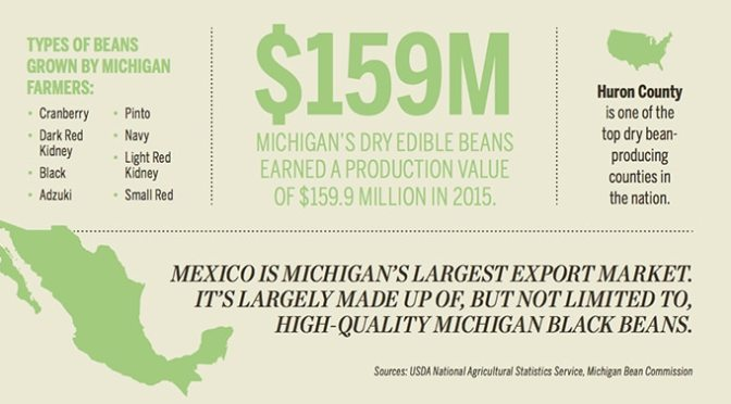 Michigan-Dry-Bean-Market