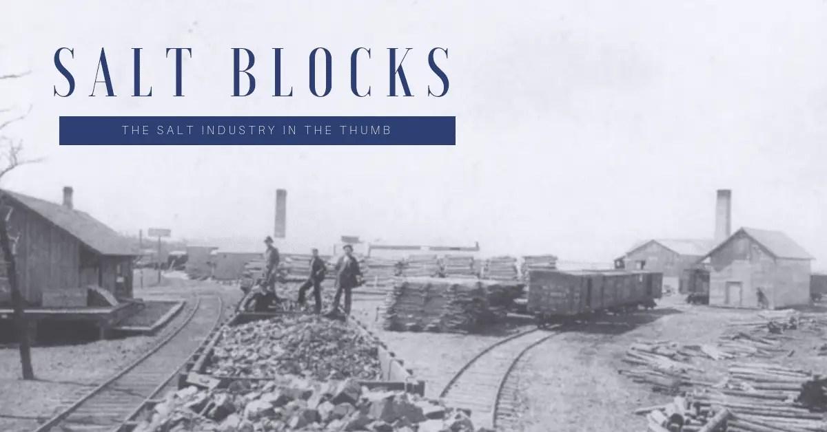 Salt Block Title Image