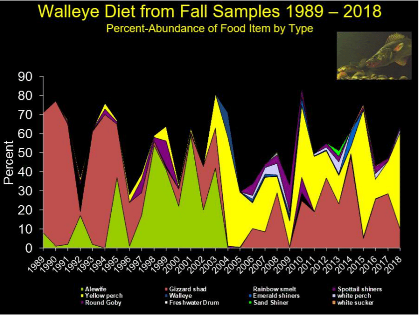 Michigan Fishing Walleye Diet