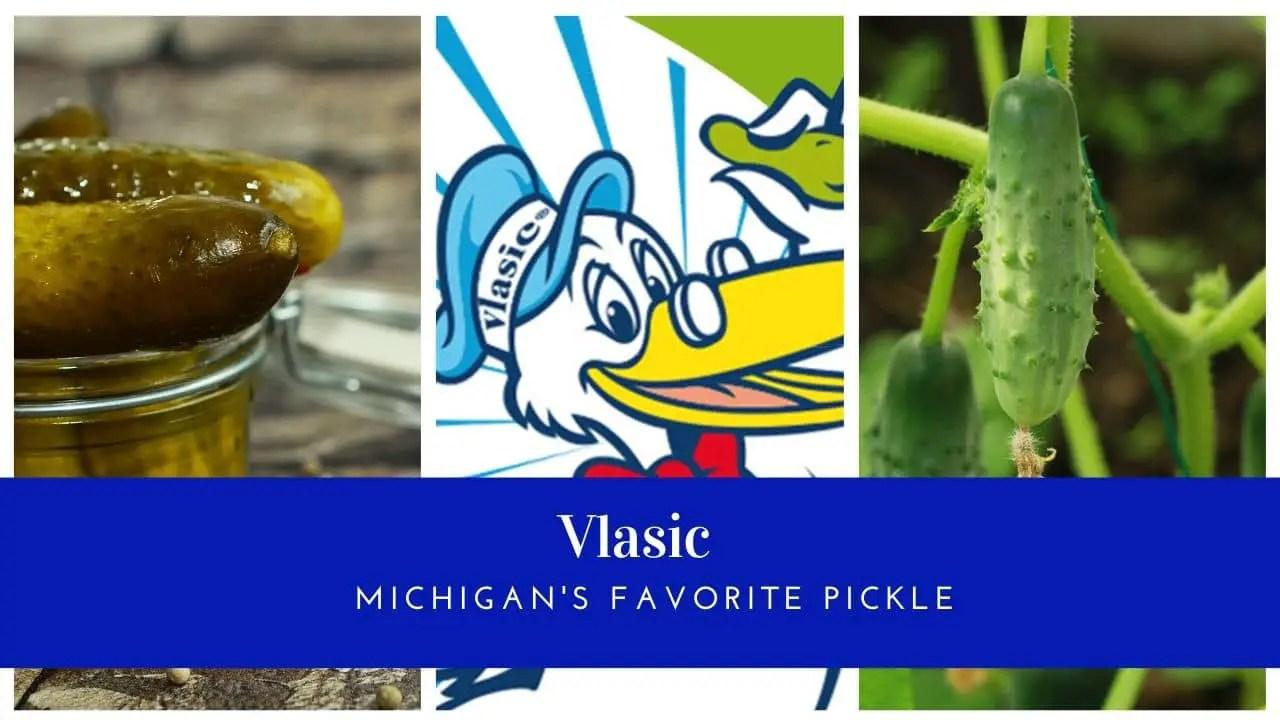 Vlasic Pickle