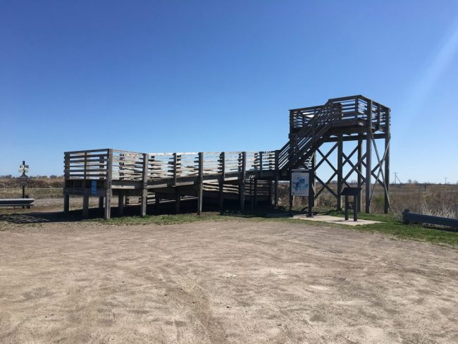 Fish Point Wildlife Observation Tower