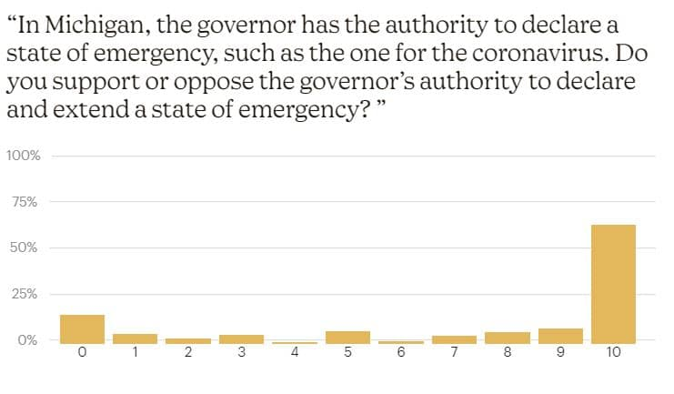 Michigan's Governor Gretchen Whitmer's Handling Of The Covid Emergency - Covid Impact Survey