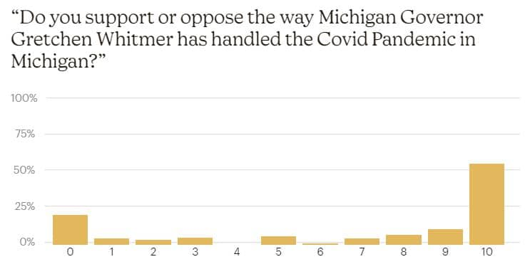 Governor Whitmer's Handling Of The Covid Pandemic - Covid Impact Survey