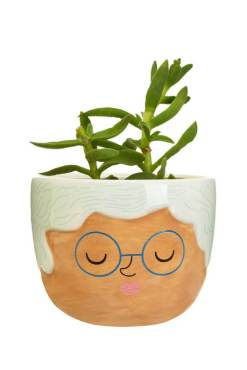 Sass & Belle - Mini Rose Planter