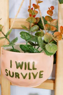 Sass & Belle - I Will Survive Hanging Planter