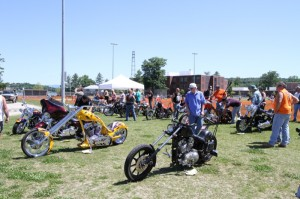 The 8th annual Laconia Bike Show at Opechee Park drew a wide range of entries