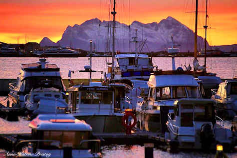 Bodo Norway harbor