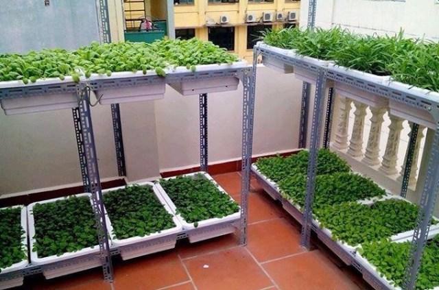 Bán thùng xốp trồng rau tphcm