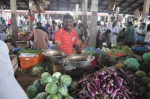 veg market- north -S-Observer