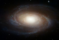 Galaxy - M81 from Hubble