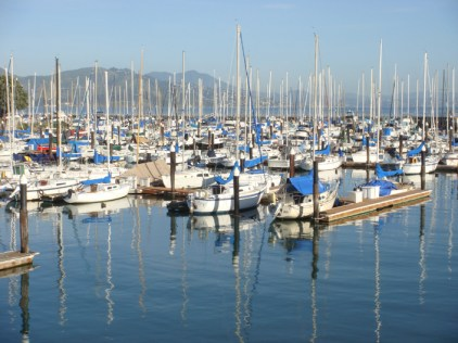 Marina Reflections - m