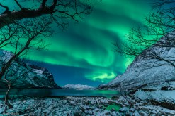 Aurora over Tromsø, Norway -- 1-9-2014 - photo by Harald Albrigtsen