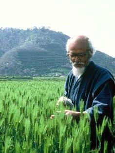 Masanobu Fukuoka (1913 -2008)