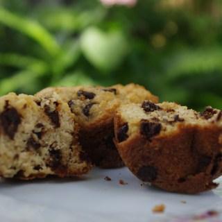 Grain Free Chocolate Chip Muffins