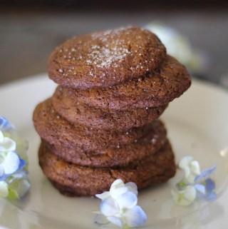 Gluten Free Molasses Cookies