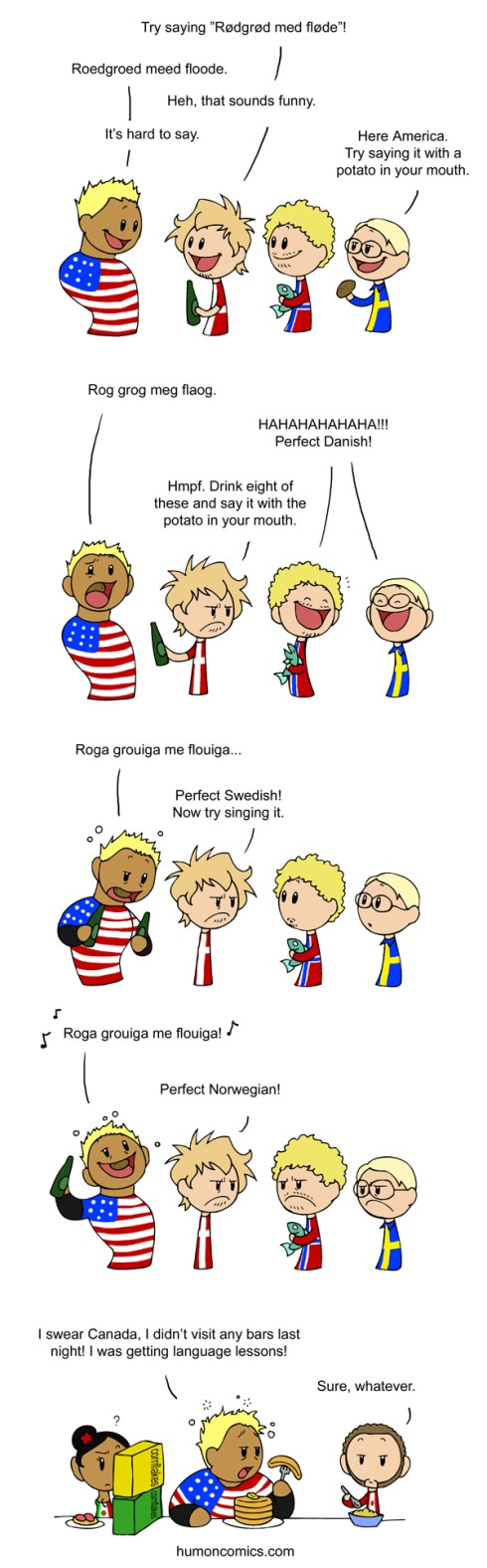 Learning the Scandinavian languages