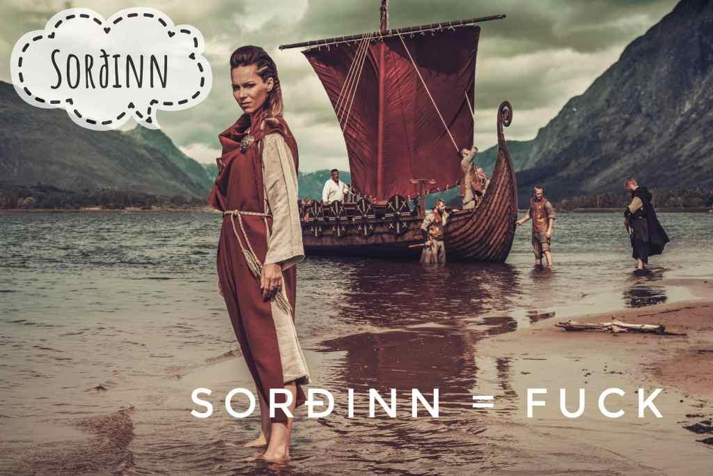 Sorðinn means fuck and is a Viking curse word