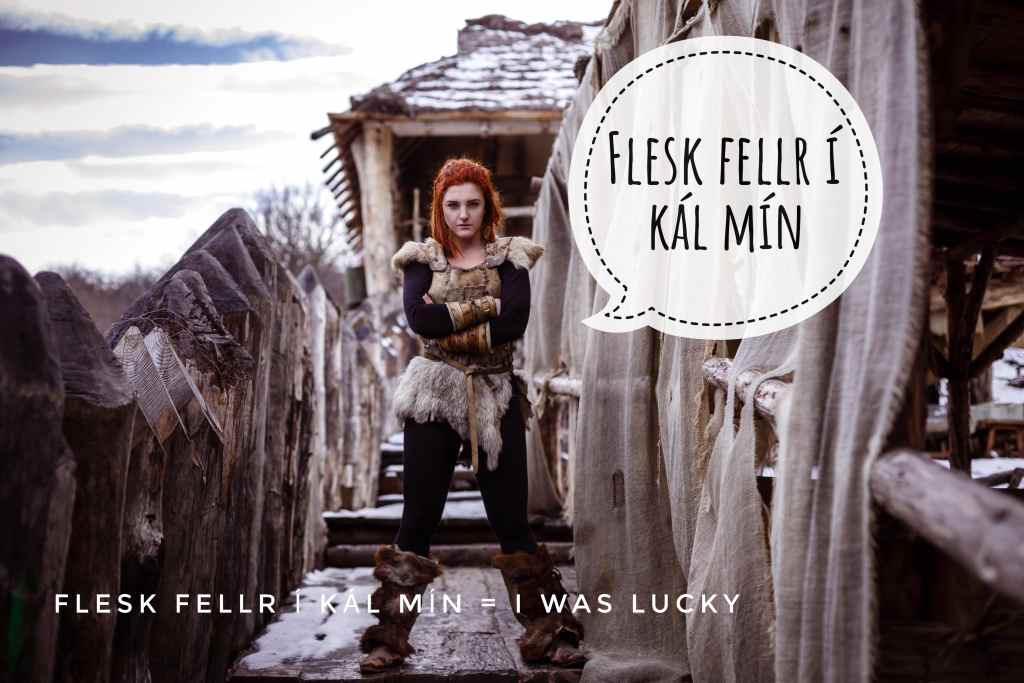 Flesk fellr í kál mín  means I was lucky in Vikingish
