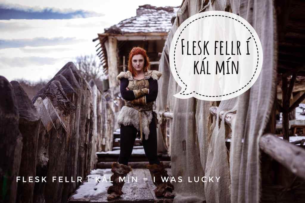 Flesk fellr í kál mín  means I was lucky in Vikingish