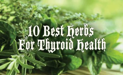 10-Best-Herbs-for-Thyroid-Health