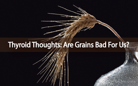 Thyroid-Thoughts-Are-Grains-Bad-For-Us?