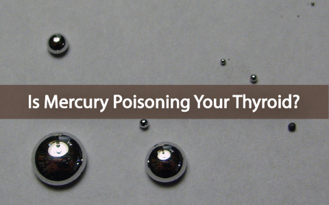 Is-Mercury-Poisoning-The-Health-Of-Your-Thyroid