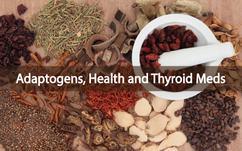 Adaptogenic-Herbs-And-Their-Interaction-With-Medications