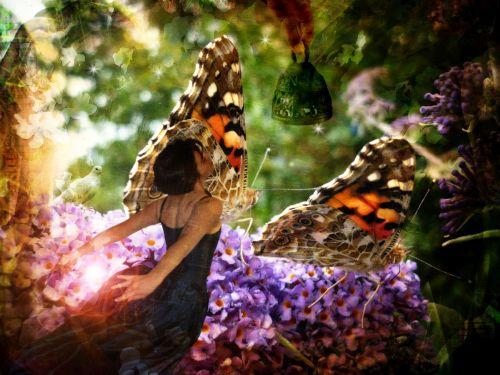 """""""On the wings of transformation"""" by Eddie van W. on Flickr"""
