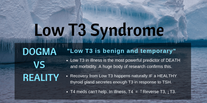 Low T3 Syndrome The tip of an iceberg-PAGE 2