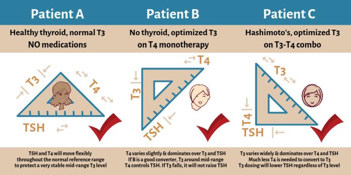 Patient A, B, C TSH-T4-T3