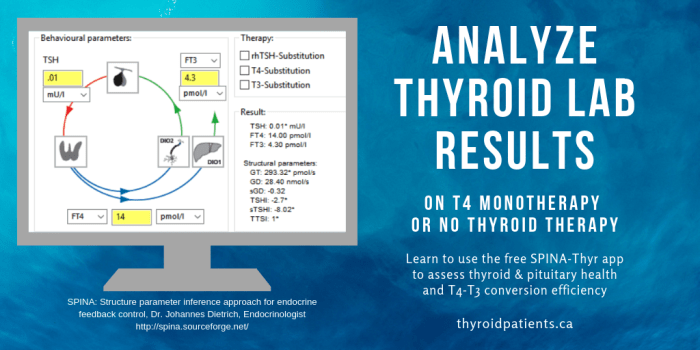 Analyze Thyroid Lab Results Using Spina Thyr Thyroid Patients Canada