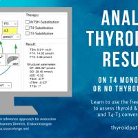 Analyze thyroid lab results using SPINA-Thyr