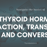 The basics of thyroid hormone action, transport and conversion