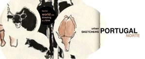 sketchers norte