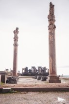 columns in persepolis