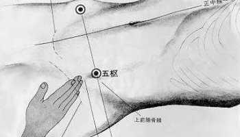 Pivot central, 五枢 wǔ shū, est le vingt septième point duméridien de la vésicule biliaire.