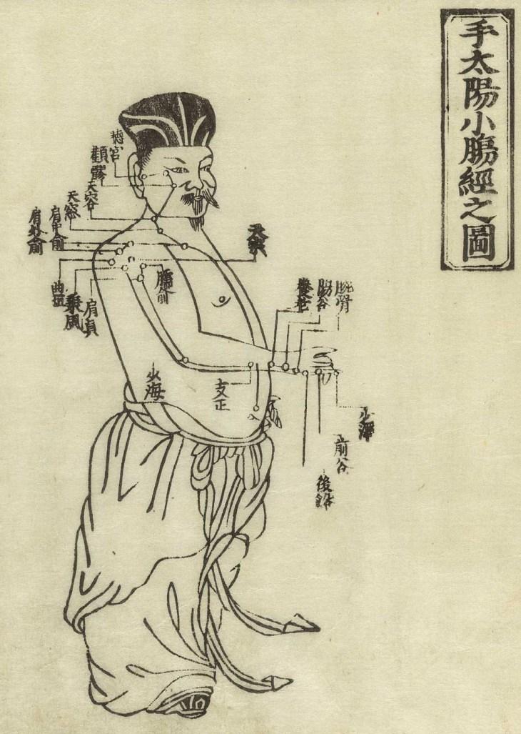 Gravure sur bois montrant le méridienintestin grêle d'un homme debout, de face, portant un pagne avec le méridien dessiné sur le bras et la poitrine avec des caractères chinois donnant les noms des points, de Jushikei hakki de Hua Shou, 1716