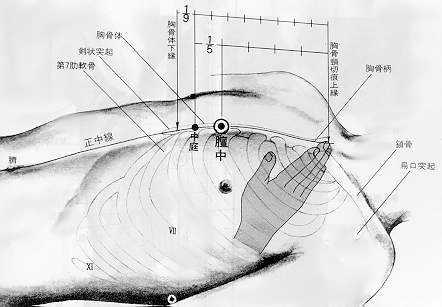 Centre du thorax, 膻中 shān zhōng, est le dix septième point du vaisseau conception.
