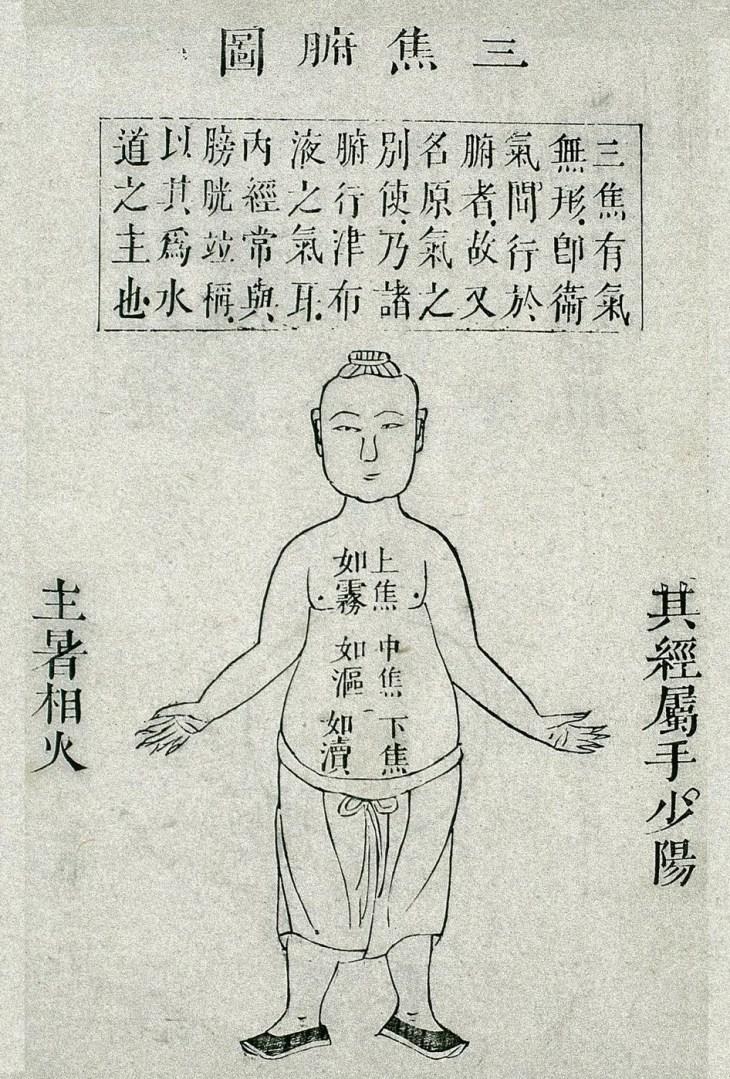 Le triple réchauffeur (三 焦: sān jiāo), gravure sur bois tirée du Canon des difficultés dans le livre des pouls (脉书难经:mài shū nán jīng ) de 扁䳍: Biǎn Què, édition de 1817.