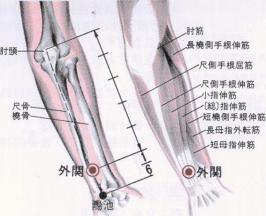 Obstruction interne, 内关 nèi guān , est le sixièmepoint duméridien dupéricarde.