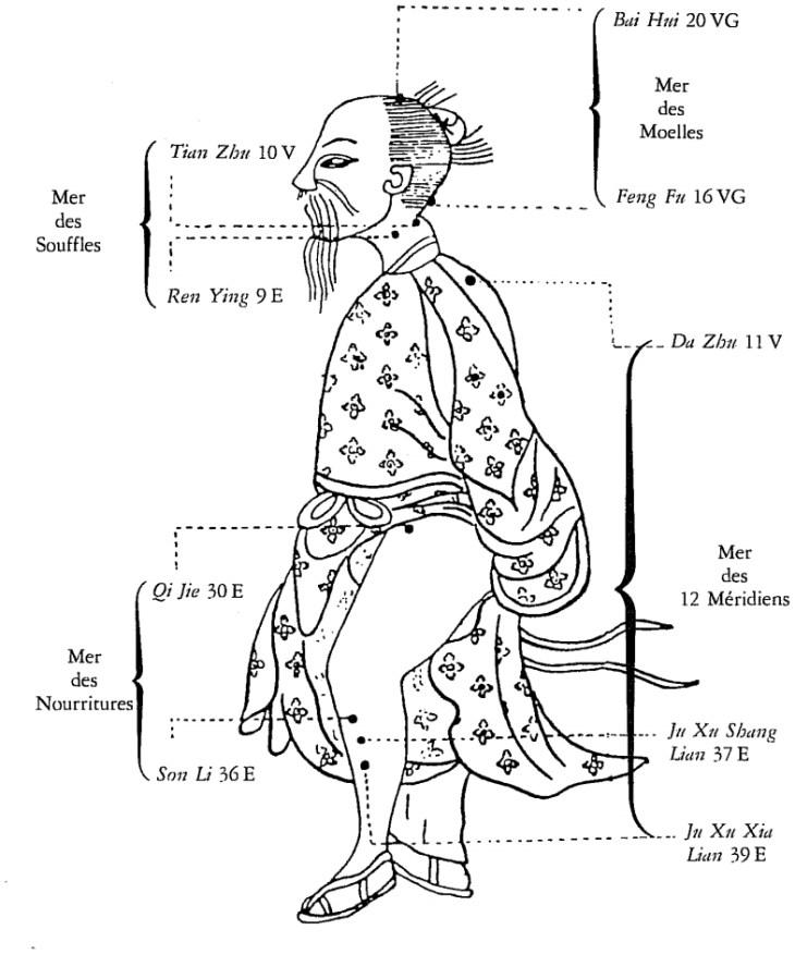 Schéma des quatre mers - Extrait des traités de médecine chinoise d'Albert Chamfrault